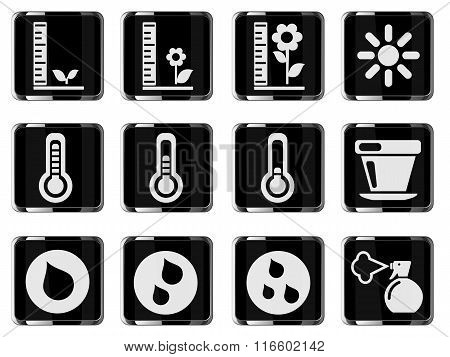 Plant Growing Sign Silhouette Icons
