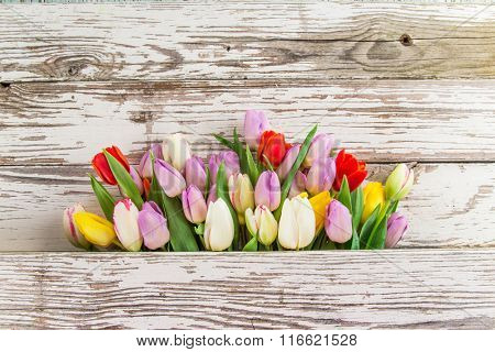 Colorful tulips on wooden table. Top view.