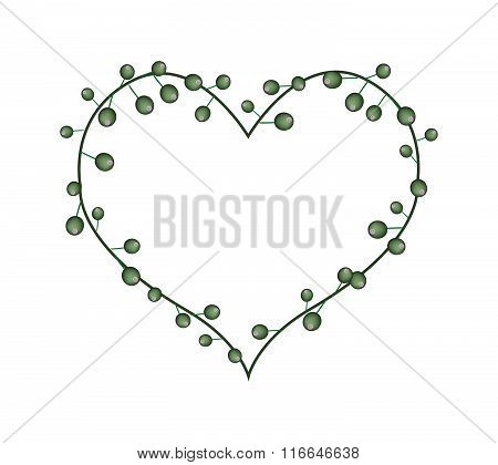 Green Flower Buds In A Heart Shape