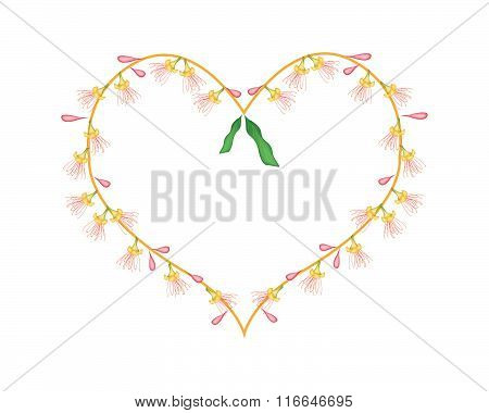 Indian Oak Flowers In A Heart Shape