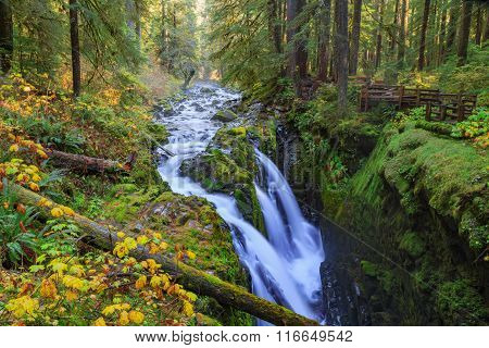 Sol Duc waterfall in Rain Forest