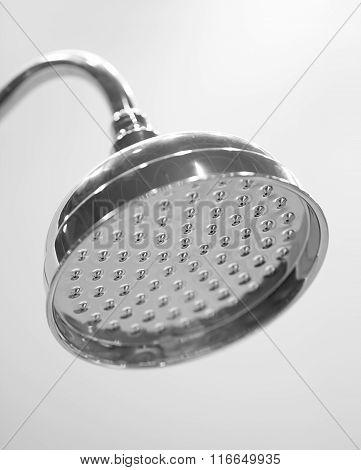 Shower Head Closeup