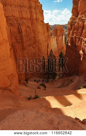 Trail of the Bryce National Park, Utah
