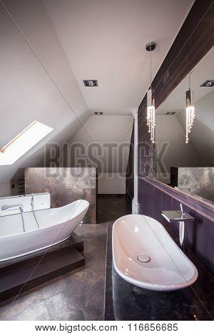 Luxury Designed Bathroom Interior