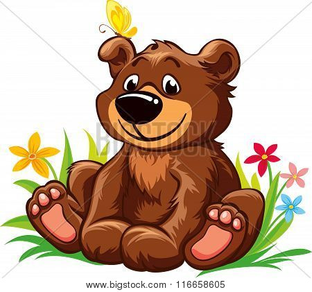Lovely little bear sitting on grass