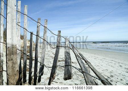It's a Beach Kinda Day