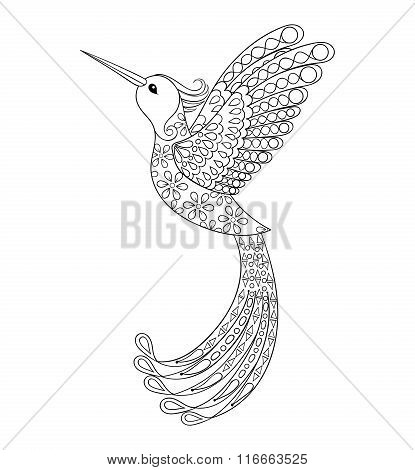 Zentangle tribal Hummingbird, flying bird totem for adult Colori