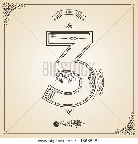 Calligraphic Fotn with Border, Frame Elements and Invitation Design Symbols. Collection of Vector glyph. Certificate and Decor Design Elements. Hand written retro feather Symbol. Number 3