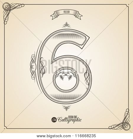 Calligraphic Fotn with Border, Frame Elements and Invitation Design Symbols. Collection of Vector glyph. Certificate and Decor Design Elements. Hand written retro feather Symbol. Number 6