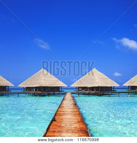 Maldives Dock Clear Water Traveling Concept