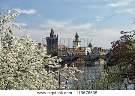 Spring In Prague. View From Vltava To The Old Town Bridge Tower