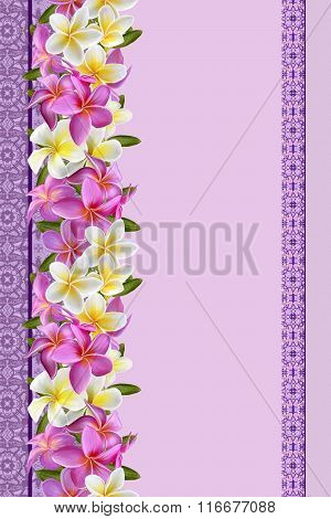 Vertical Flower Border, Pattern, Pattern, Floral Background,seamless, Pink And White Plumeria