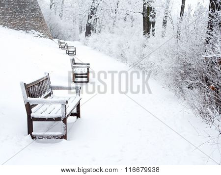 Snow-covered path in park with benches and bushes