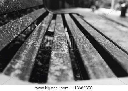 Bench Close-up.