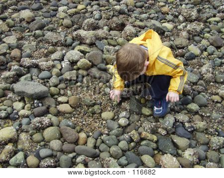 Child Exploring Beach