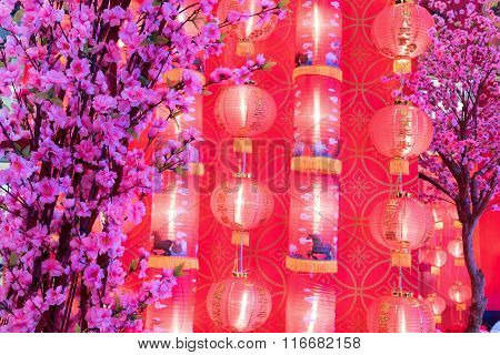Pink Chinese Plum Flower With Red Light Chinese New Year