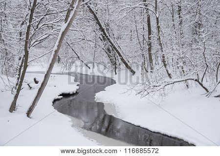 Creek And Winter Wonderland