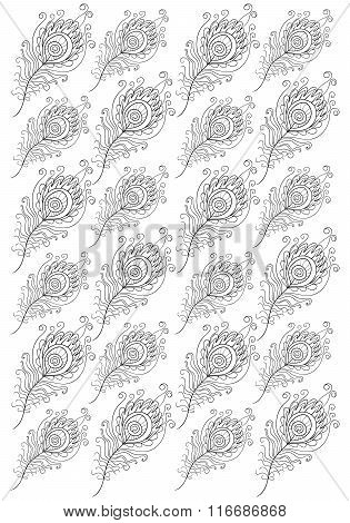 Hand drawn feathers of Peacock for adult coloring page A4 size i