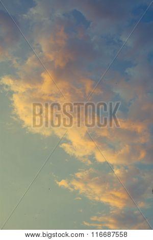Golden Cumulus Clouds