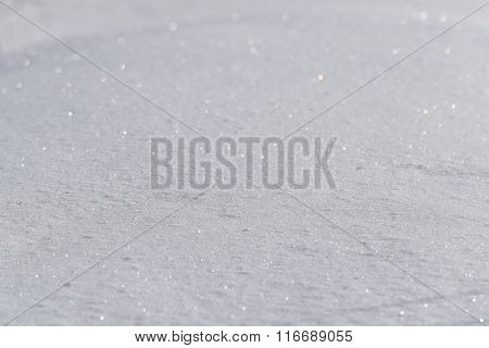 Snow Close Up