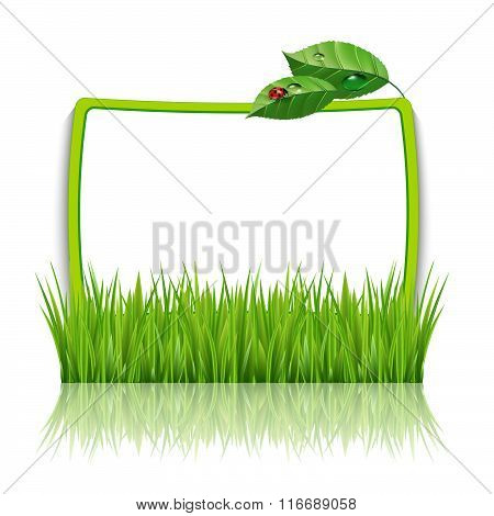 Frame With Green Grass And Leaves
