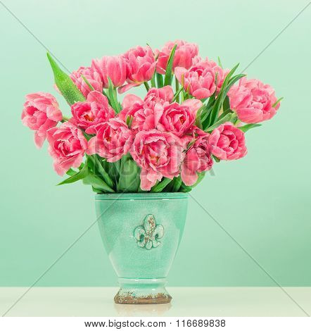 Pink Tulip Flowers Over Turquoise Background
