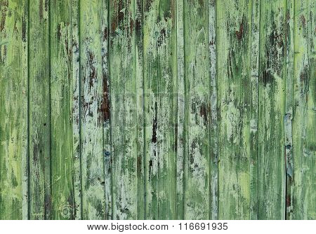 Cracked Green Paint