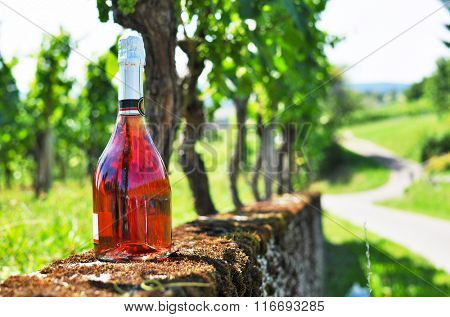 Bottle of champagne against vineyards