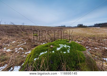 Winter Or Early Spring Landscape Of Boulder Stones On Fields