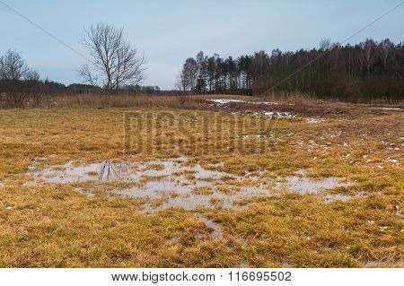 Early Spring Landscape Of Grassland And Puddle Under Cloudy Sky