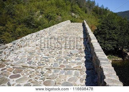 The Devil's Bridge over Arda river and Rhodopes mountain, Bulgaria