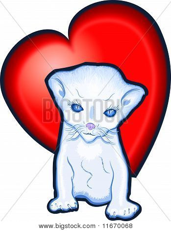 Red Heart pussycat