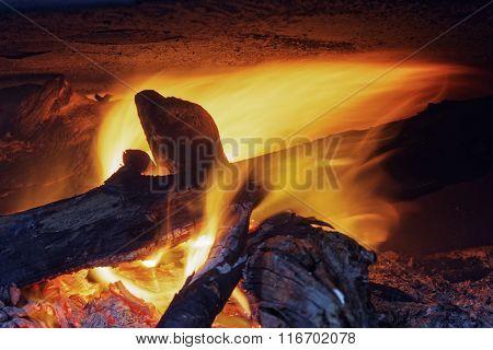 Camp Fire 134