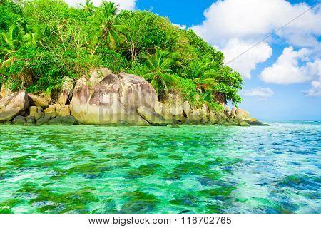 Dream Bay Summertime