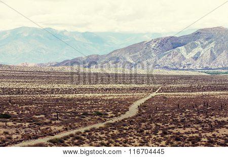 Scenic landscapes of Northern Argentina.Instagram filter.