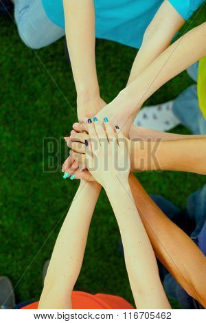 People joining their hands  on green grass