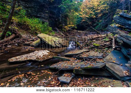 Fall On A Small Stream Near Ithaca, Ny