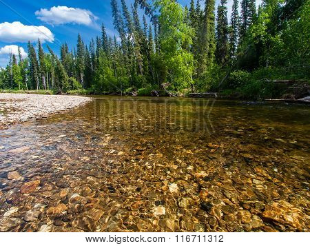 North Fork Of The Chena River