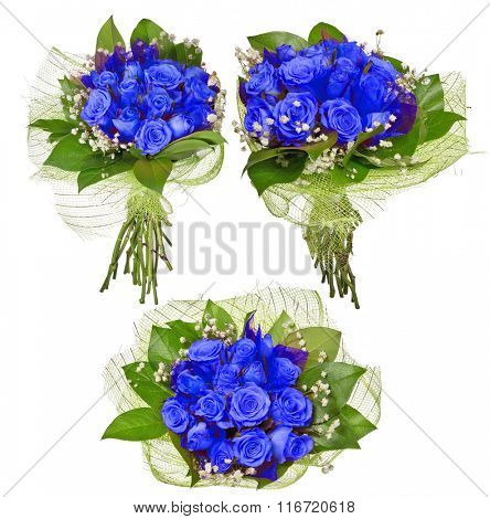three bunches of blue rose flowers isolated on white background