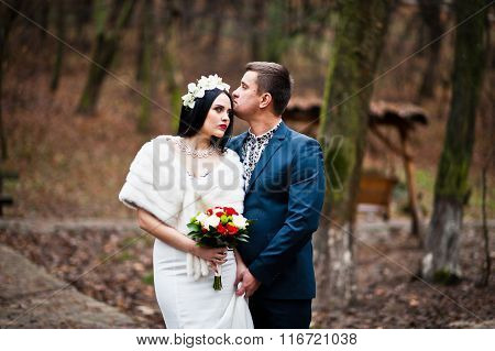 Graceful Wedding Couple Background Wood With No Deciduous Trees