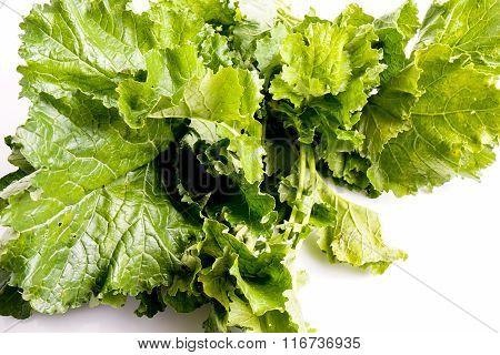 Cime De Rapa, Turnip Greens