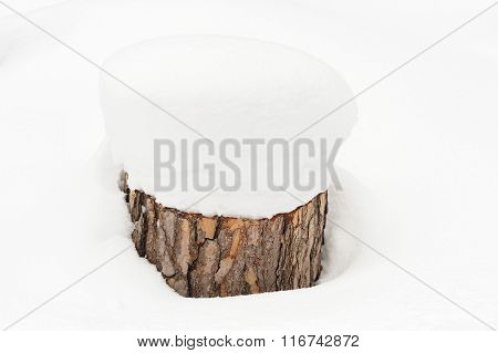 Tree Stump Covered In Deep Snow