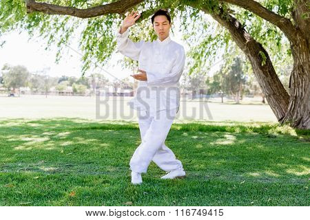 Handsome man practicing thai chi