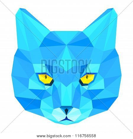 Abstract Polygonal Geometric Triangle Bright Blue Cat Portrait Isolated On White