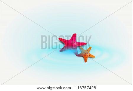 Starfish On Blue Lagoon