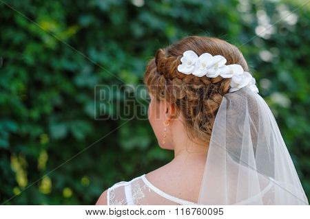 Bride With A White Veil On A Background Of Green Leaves In The Summer Park