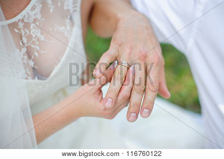 Bride Wears A Gold Wedding Ring On The Finger Of The Groom