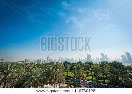 Beautiful Landscape Of Palm Trees In The Foreground And In The Background The Metropolis