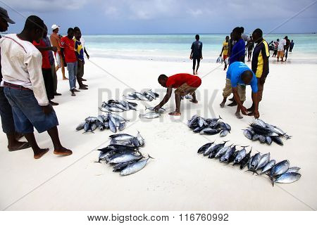 Fish Market On The Beach