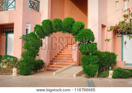 beautiful green arch with decorative tree at the hotel